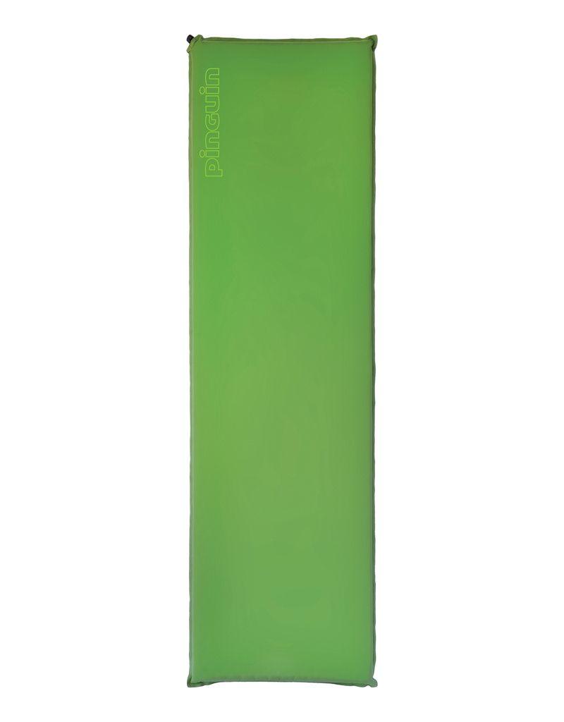 Pinguin Horn 20 Long green - zelená